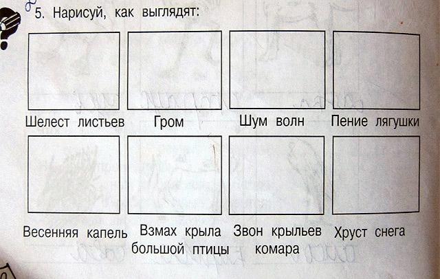Куда катится Российское образование? Вот так тесты