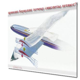 Самолет может летать благодаря принципу Бернулли