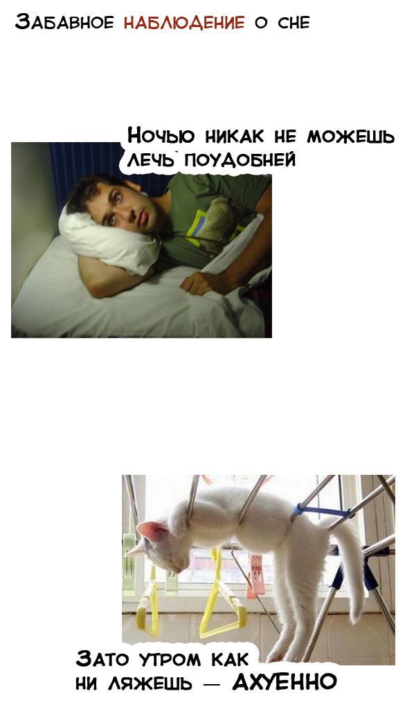 Забавное наблюдение о сне