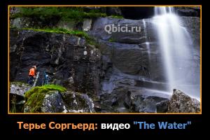 the water терье соргьерд