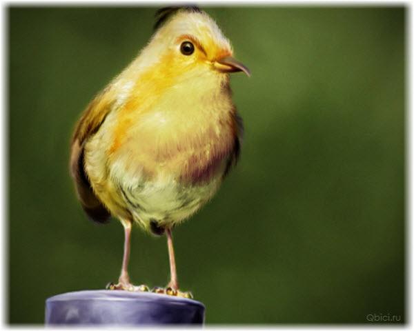 Фото желтой птицы из Angry Birds