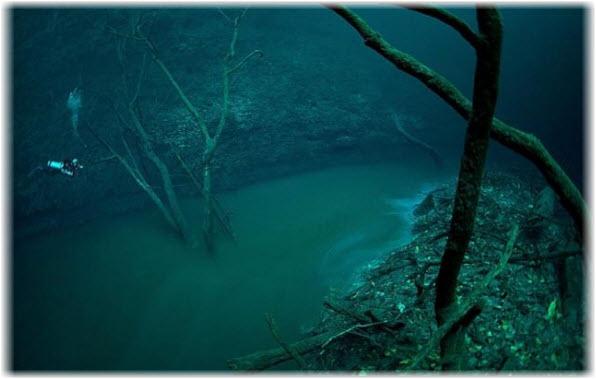 Подводная река в пещере Cenote Angelita