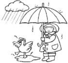 утки любят дождь