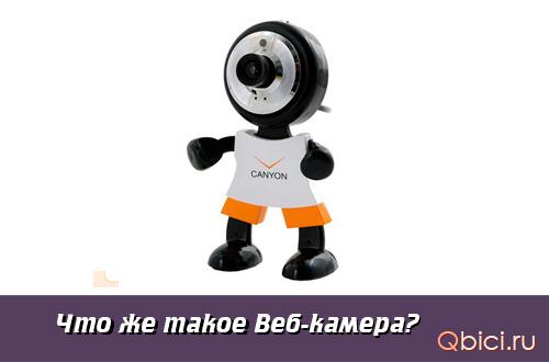 Веб-камера – требование 21 века