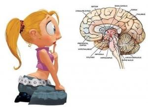 Интересные факты о мозге человека