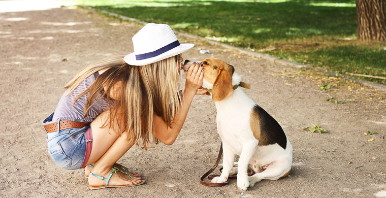 Ветеринары рассказали, опасно ли «целоваться» со своими собаками