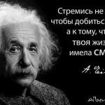 В чем смысл жизни…