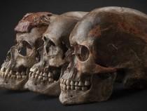 Обнаружены следы доисторической «Игры престолов» в Европе