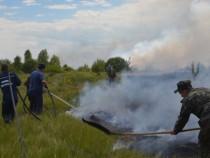Что показали пожары под Чернобылем