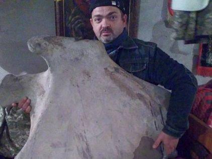 В Николаеве нашли гигантскую кость мамонта